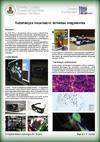 http://fizika-tanosveny.elte.hu/posters/poster_tn_10.jpg